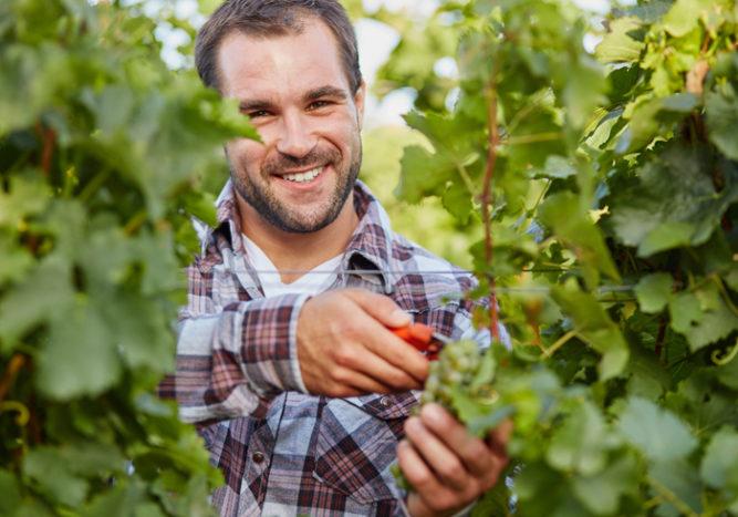 Prévoyance : une couverture simplifiée pour les travailleurs saisonniers - AGIPI